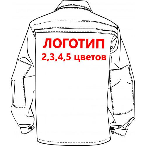 Нанесение логотипа-термотрансфер, кол-во цветов: 2 и более, размер А4