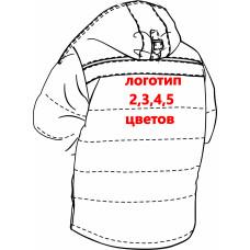 Нанесение логотипа-термотрансфер СОЛЬВЕНТ, кол-во цветов: 2 и более, размер А4