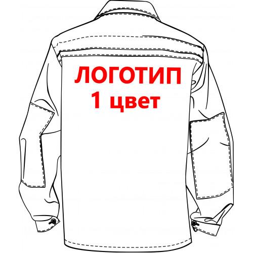 Нанесение логотипа-термотрансфер, кол-во цветов: 1, размер А4